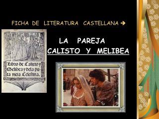 FICHA  DE   LITERATURA   CASTELLANA  