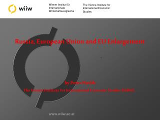 The Vienna Institute for International Economic Studies (WIIW)