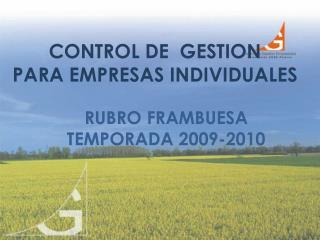 CONTROL DE  GESTION  PARA EMPRESAS INDIVIDUALES