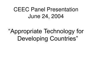 CEEC Panel Presentation June 24, 2004