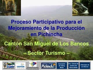 Proceso Participativo para el Mejoramiento de la Producción      en Pichincha