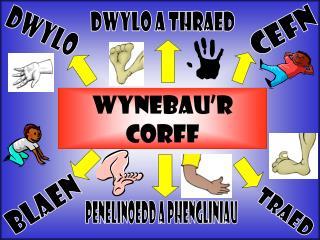 WYNEBAU'R CORFF