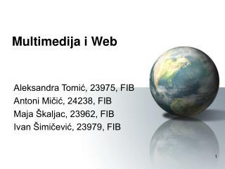 Multimedija i Web