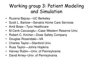Working group 3: Patient Modeling and Simulation