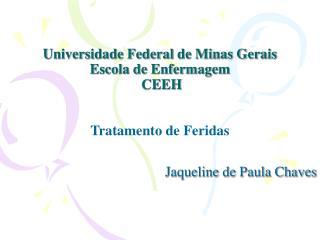 Universidade Federal de Minas Gerais Escola de Enfermagem  CEEH