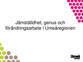 Jämställdhet, genus och förändringsarbete i Umeåregionen