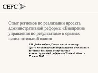 Е.И. Добролюбова, Генеральный директор Центр экономического и финансового консалтинга