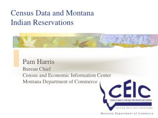 Census Data and Montana Indian Reservations