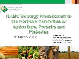 NAMC Strategy Presentation to the Portfolio Committee of Agriculture, Forestry and Fisheries