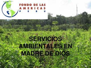SERVICIOS AMBIENTALES EN MADRE DE DIOS