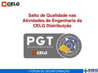 Salto de Qualidade nas Atividades de Engenharia da CELG Distribuição