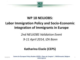 WP 18 NEUJOBS:  Labor  Immigration Policy and Socio-Economic Integration of Immigrants in Europe