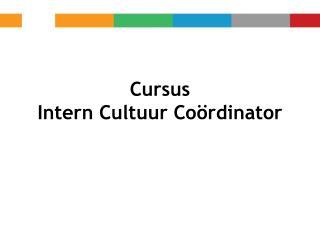 Cursus  Intern Cultuur Coördinator