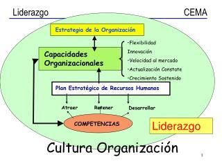Estrategia de la Organizaci�n