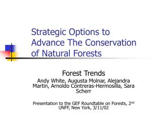 Strategic Options to Advance The Conservation of Natural Forests