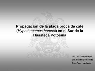 Propagación de la plaga broca de café ( Hypothenemus hampei ) en el Sur de la Huasteca Potosina