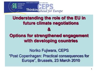Understanding the role of the EU in future climate negotiations &