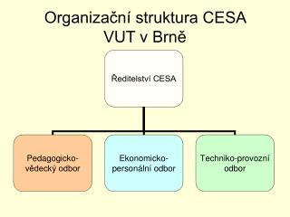 Organizační struktura CESA  VUT v Brně