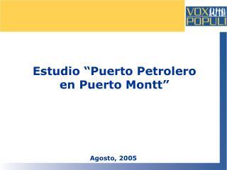 """Estudio """"Puerto Petrolero en Puerto Montt"""""""