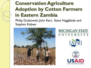 Conservation Agriculture Adoption by Cotton Farmers in Eastern Zambia