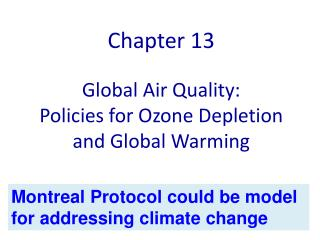 Global Air Quality:  Policies for Ozone Depletion and Global Warming