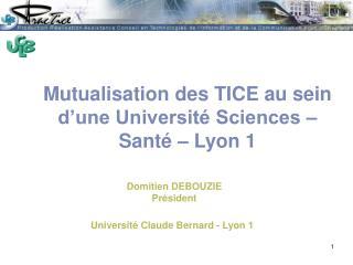 Mutualisation des TICE au sein d'une Université Sciences – Santé – Lyon 1
