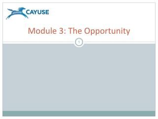 Module 3: The Opportunity