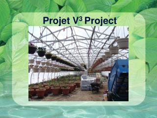 Projet V 3  Project