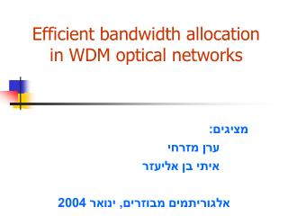 Efficient bandwidth allocation in WDM optical networks