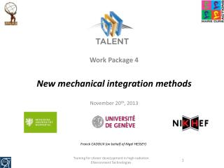 Work Package 4 New  mechanical integration methods November 20 th , 2013
