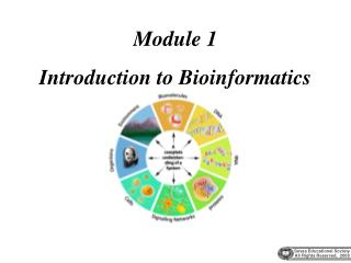 Module 1 Introduction to Bioinformatics