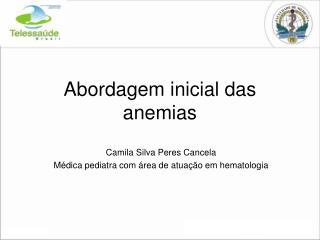 Abordagem inicial das anemias
