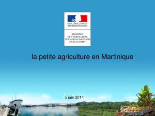 la petite agriculture en Martinique