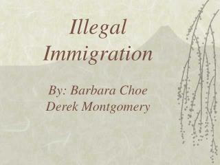 Illegal Immigration By: Barbara Choe Derek Montgomery