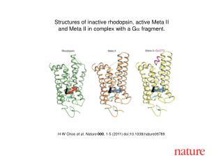 H-W Choe  et al. Nature 000 , 1-5 (2011) doi:10.1038/nature09789