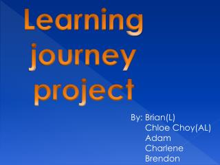 Learning journey project