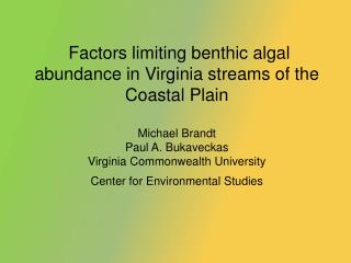 Why study benthic algae in streams?