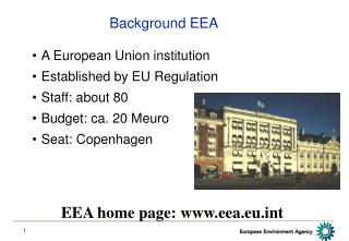 Background EEA