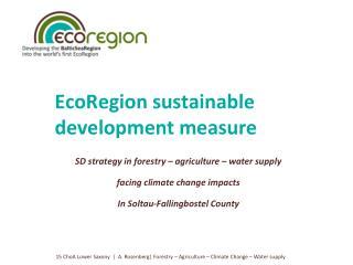 EcoRegion sustainable development measure