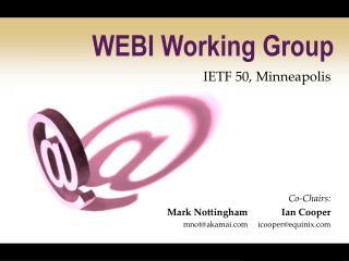 WEBI Working Group
