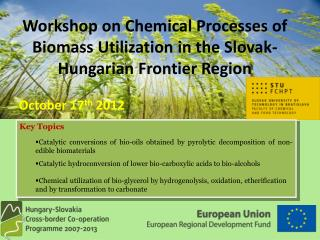 Workshop on Chemical Processes of Biomass Utilization in the Slovak-Hungarian Frontier Region