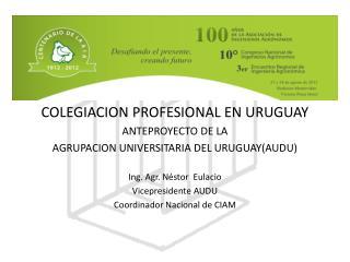 COLEGIACION PROFESIONAL EN URUGUAY ANTEPROYECTO DE LA  AGRUPACION UNIVERSITARIA DEL URUGUAY(AUDU)