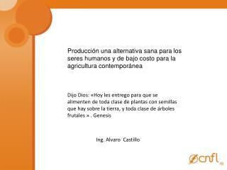 Ing. Alvaro  Castillo