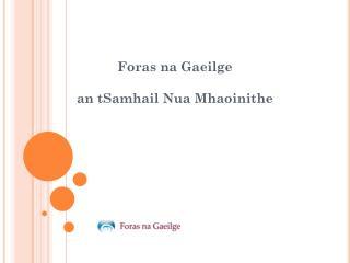 Foras na Gaeilge  an tSamhail Nua Mhaoinithe