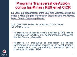 Programa Transversal de Acci�n contra las Minas / REG en el CICR