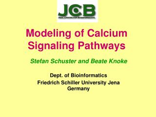Modeling of Calcium  Signaling Pathways