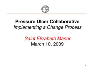 Pressure Ulcer Collaborative Implementing a Change Process Saint Elizabeth Manor March 10, 2009