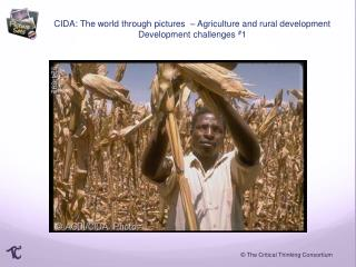 CIDA: The world through pictures  – Agriculture and rural development Development challenges  # 1