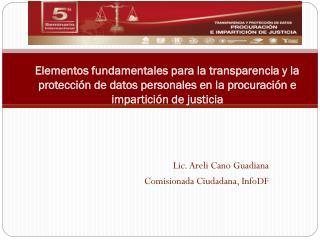 Lic. Areli Cano Guadiana Comisionada Ciudadana, InfoDF