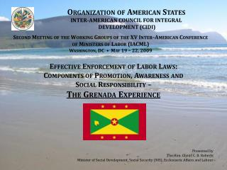 Organization of American States INTER-AMERICAN COUNCIL FOR INTEGRAL  DEVELOPMENT ( CIDI )